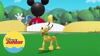 El Avión de Mickey | ¿Dónde Está Pluto? | La Casa de Mickey Mouse