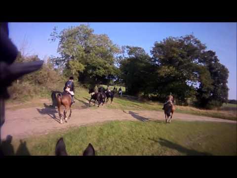 SC & Rma Drag hunt lines 2 & 3 Ashridge farm 2011