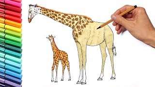 How to Draw a Giraf - Animals Color Pages for Children - Learning Colors