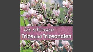 Jan Stamitz :: Trio No. 4 in G minor - Rondo, Allegretto