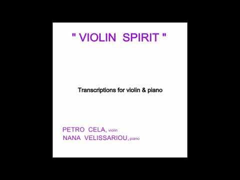 Je t'aime Lara Fabian ( Violin & Piano Cover)