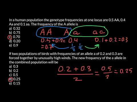 How to Find Allele Frequency
