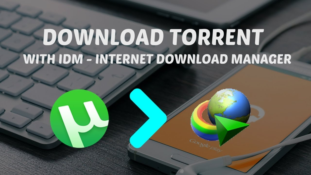 download torrent in idm free