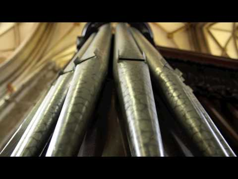 Toccata in D minor by J.S.Bach performed by Andrew Campbell at Bristol Cathedral