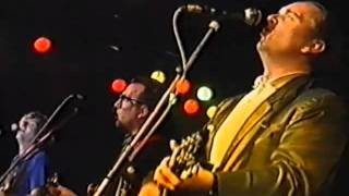 ELVIS COSTELLO - PRETTY FLAMINGO