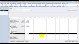 QuickBooks Training - Set Up Budget