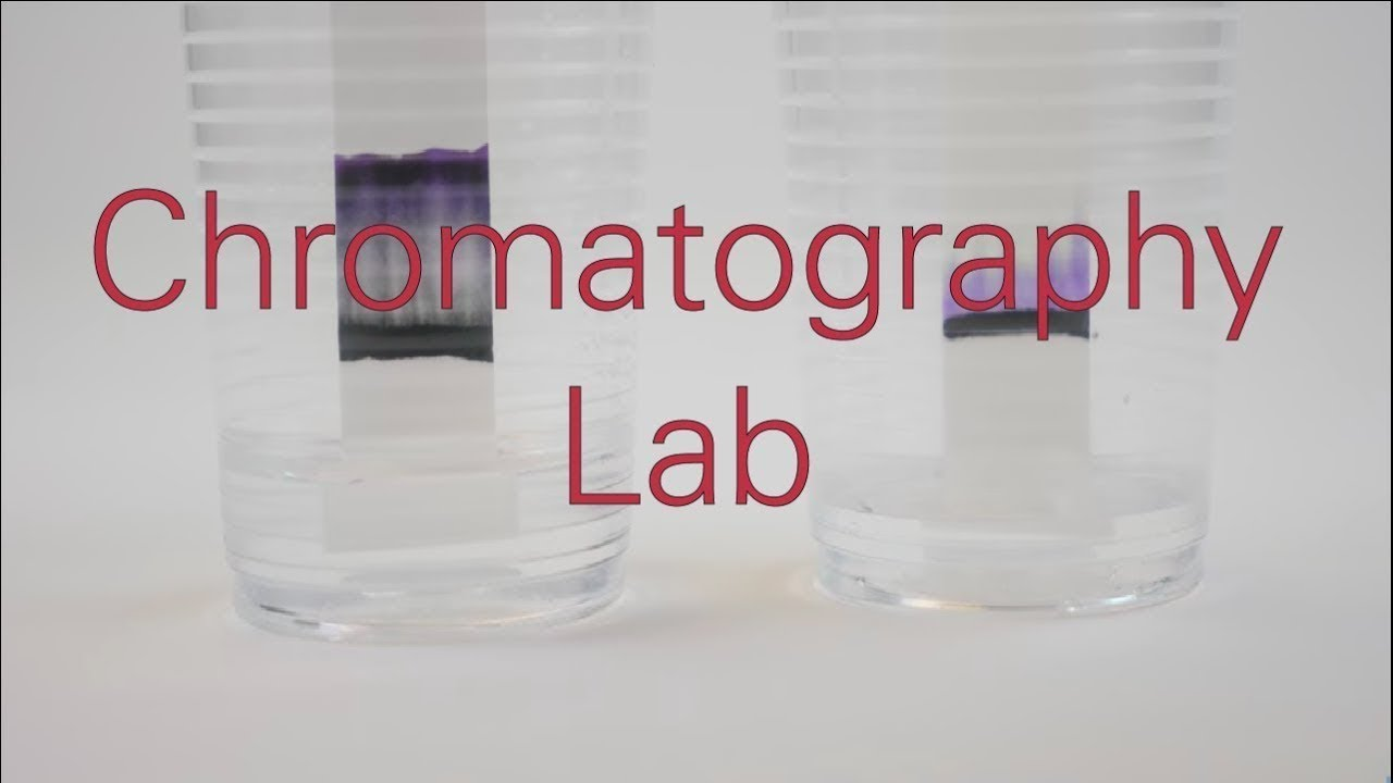 Chromatography Lab - Activity - TeachEngineering