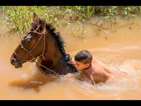 Swimming with Horses- a documentary shoot in Vinales, Cuba using the Sony 70-200 G Master lens