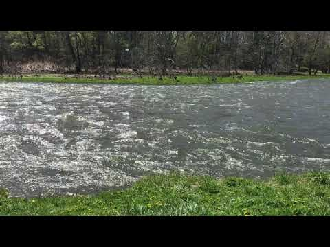 The rushing waters of the West Branch on May 1, 2021
