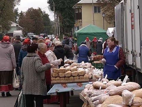 Плодоовощная ярмарка «Осень 2017» добралась до Щигров