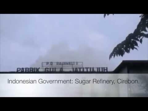 Indonesian Sugar Refinery
