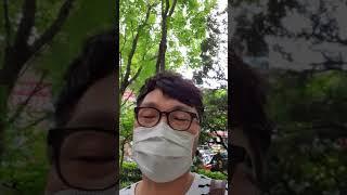 자연 천연 호박 관찰 | 아파트 단지 느티나무?에서 호…