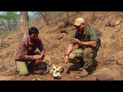 Surviving the Zambezi River Basin
