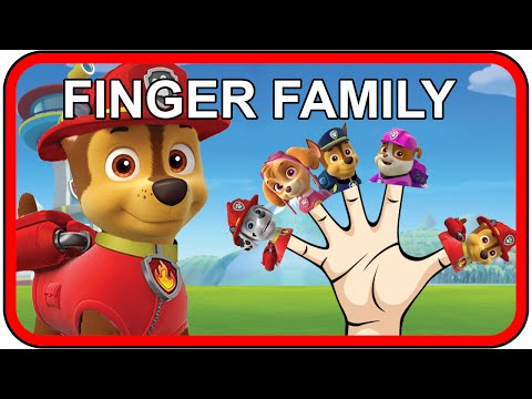 Paw Patrol Finger Family Songs | Nursery Rhymes for Children and Kids