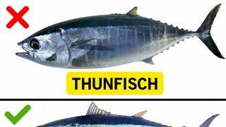 10 Fische, die du nicht essen solltest!