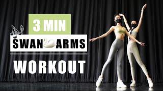 [HD] 3 MIN Swan Arms Workout (No equipment) Beginner Friendly 天鹅臂