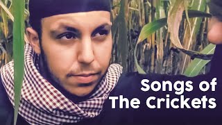 Essam - Songs of the Crickets (Official Video)