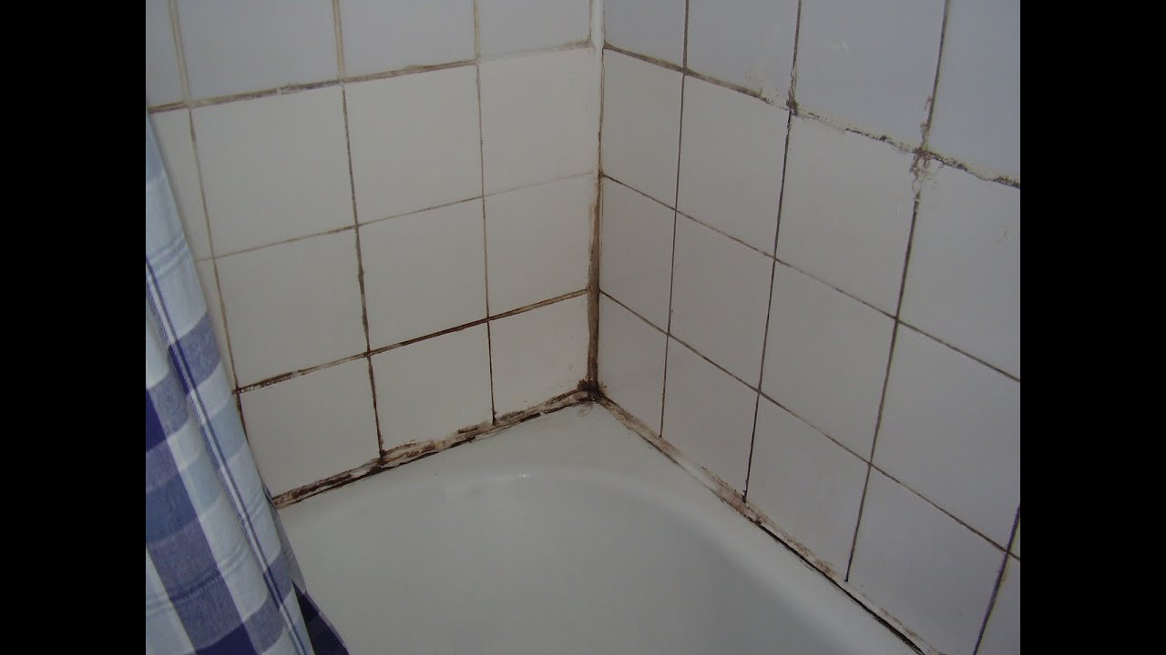 Black Mold Under Wallpaper How To Cure Damp And Mould In The Bathroom Youtube