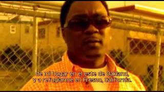 vuclip Cocaine Cowboys 2 - Hustlin' With the Godmother (sub. español)