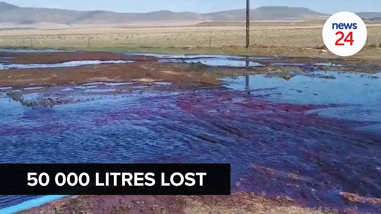 WATCH | Red, red wine: 50 000 litres lost after tank collapses at cellars in Western Cape
