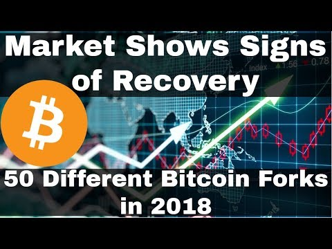 Crypto News | Market Shows Signs of Recovery. 50 Different B