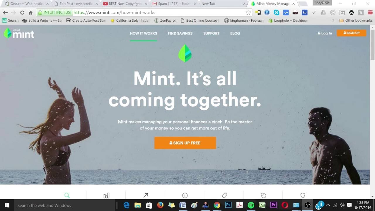 LoopHole | How to use Mint by Intuit