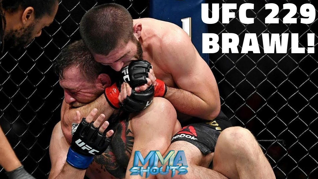 UFC 229 BRAWL! Conor McGregor Vs Khabib Nurmagomedov | MMA Shouts