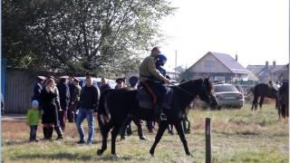 14 октября 2016 года Бутурлиновка.