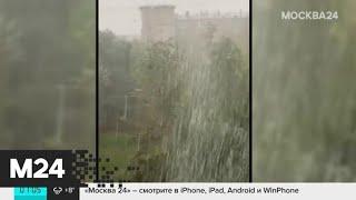 Стало известно, как столица пережила непогоду - Москва 24