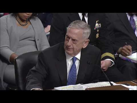 Senator Warren Asks Secretary of Defense Mattis About Cyber Threats