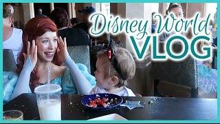 Travel Vlog | Disney World, Part 2 | February 2017