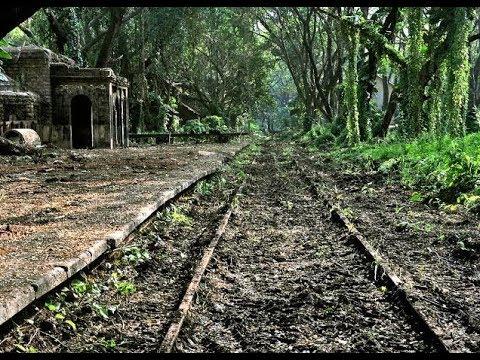 ആരും ഇല്ലാത്ത ഒരു റെയിൽവേ സ്റ്റേഷൻ |OLD COCHIN CENTRAL RAILWAY STATION |MANGALAVANAM| MALAYALAM VLOG