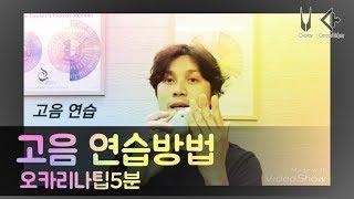 Download lagu 오카리나팁5분(14)고음연습-하지훈(ocarina 강의)jihun
