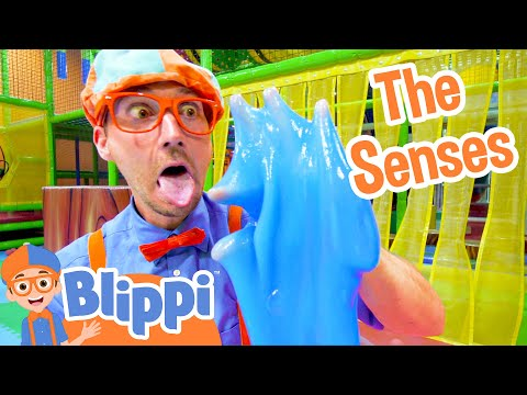 Blippi Learns the 5 Senses at a Play Place   Educational Toddler Videos
