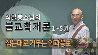 제89회(불교학개론3권) - 심는대로 거두는 인과응보