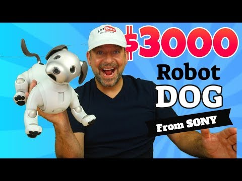 Sony Aibo a $3000 Robot Dog.  Comprehensive Review.