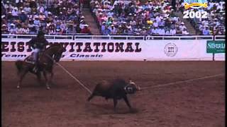 bfi team roping top 5 2002