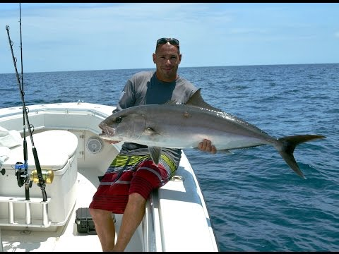 Amberjack Fishing With Vertical jigs  REEFDONKEY!
