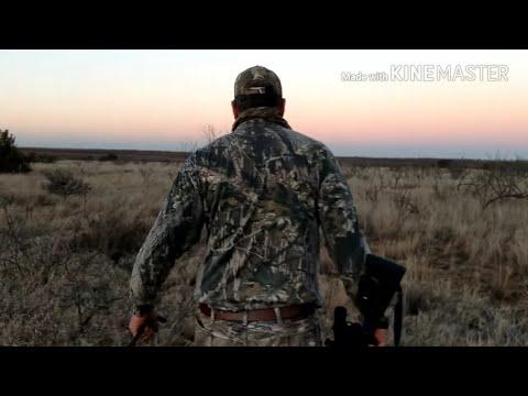 West Texas Varmint Hunt