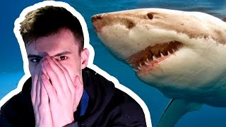 ATTACKED BY A SHARK! | Roblox - Jaws Shark Attack