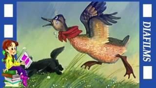 Сказки детям про животных  аудиосказки