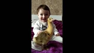 cute baby & duck