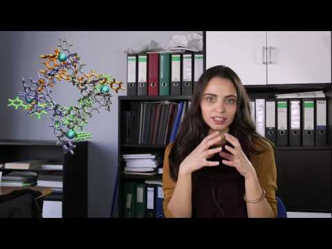 Ligia Mesquita - Life as a PhD student in Chemistry