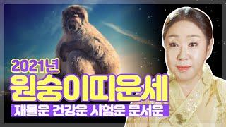 """2021년 원숭이띠신년운세 """"출세운과 명예운이 아주 강하다"""" (04년생 92년생 80년생 …"""