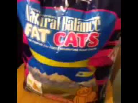 Natural balance fat cats food