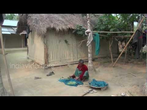 Rajambil Village, Bagsari Assam