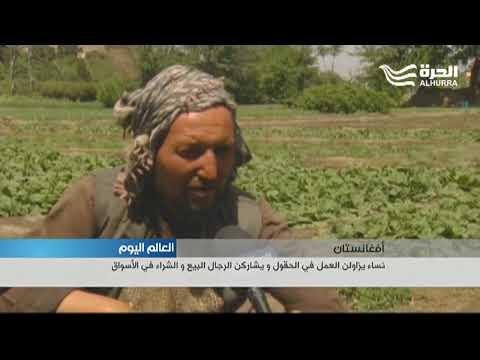 النساء الأفغانيات يقتحمن الزراعة والتجارة في كابل