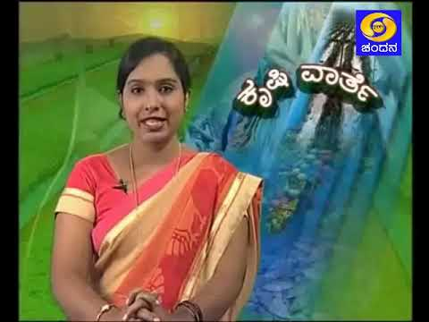 "1.30pm-""Krishivarthe"" ""ಕೃಷಿವಾರ್ತೆ""- Pest managment in Tur Cultivation"