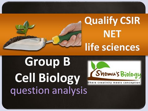How to qualify CSIR NET life sciences - Group B cell biology question analysis