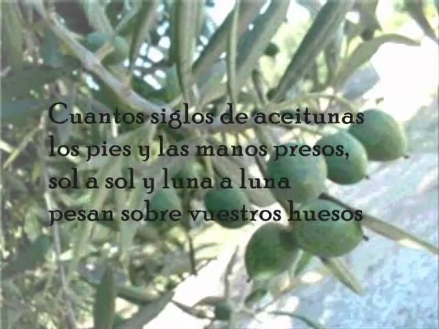 Tres Poemas Olivareros El árbol Que Habla